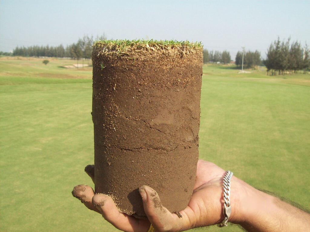 Compacted Soil