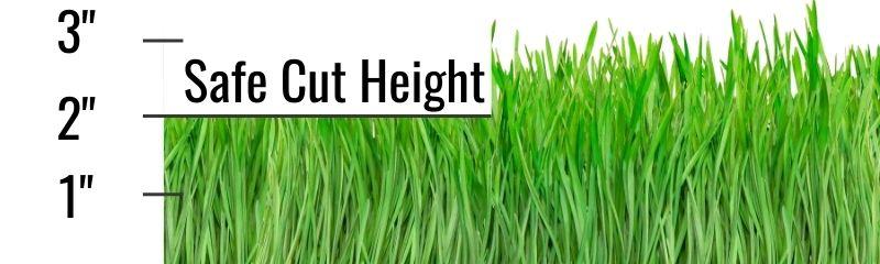 Turfgrass one third rule