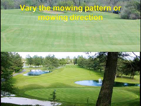 vary the mowing pattern or mowing direction