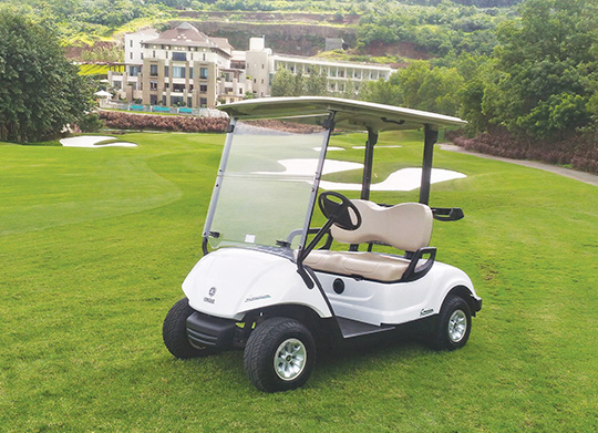 yamaha-golfcart-two-seater-in-india